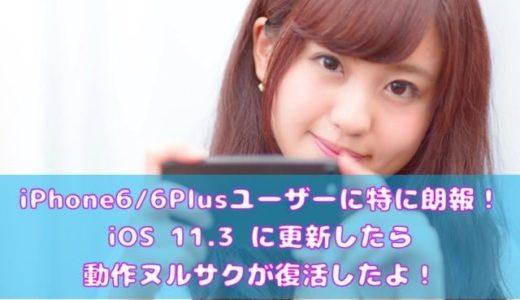 iPhone 6 / 6 Plus ユーザーに特に朗報! iOS 11.3 に更新したら動作ヌルサクが復活したよ!