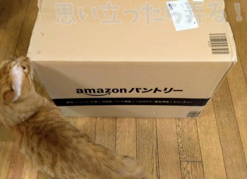 amazonパントリーBOXが届いた!